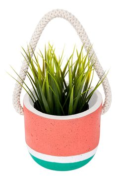 Add a pop of color to hanging plant displays with a striking cement planter featuring a vibrant border.
