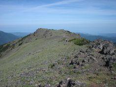 Mt Townsend's open summit (Olympics)