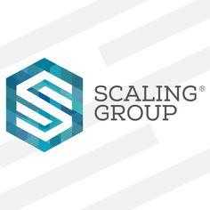 Hexagon logo SG