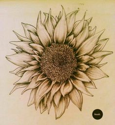 Love this sunflower for a tattoo idea.