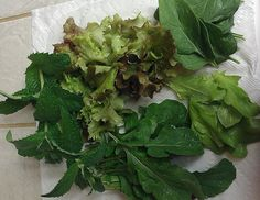 Assorted greens 2014