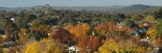 whats-on-castlemaine
