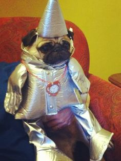 19 Pugs Who Knew How To Rock A Halloween Costume. The Wrecking Ball Pug Is Perfect - Dose - Your Daily Dose of Amazing Pugs In Costume, Family Halloween Costumes, Dog Costumes, Costume Ideas, Group Halloween, Costume Contest, Halloween Halloween, Couple Halloween, Scream Halloween