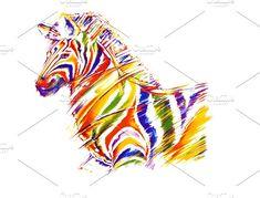 Zebra in colours by Rossenrode Ricochet on @creativemarket