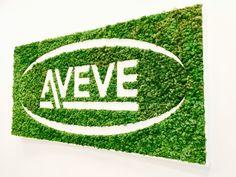 Réalisations | Découvrez quelques projets que nous avons réalisés. Murs et cadres végétaux, projets personnalisés en mousses et plantes stabilisées.