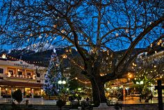 This photo from Evritania, Central Greece is titled 'Christmas in Karpenisi'. Christmas Feeling, Christmas Lights, Christmas In Greece, Places In Greece, Greek Isles, Time Of The Year, Cool Photos, Amazing Photos, Places Ive Been