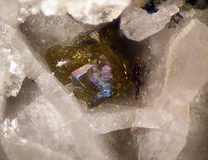 Farneseite, (Na,Ca,K)56(Al6Si6O24)7(SO4)12·6H2O, Colle Rosati, Valentano, Viterbo, Latium, Italy