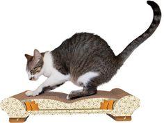 1000 Ideas About Cat Scratch Furniture On Pinterest Cat