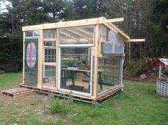 greenhouses from old windows | Greenhouse from pallets and old windows