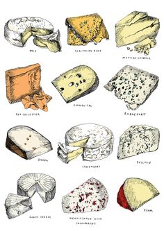 Twelve Cheeses | rePinned by CamerinRoss.com