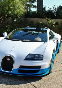 Blue & white car Bugatti Veyron....  Now someone needs to give me a drive in that car.. Look at it I love this car
