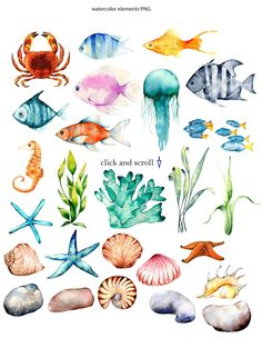Sea breeze I am glad to introduce my watercolor collection. This collection contains many different elements: compositions, figures, patterns. Coral Watercolor, Watercolor Fish, Watercolor Images, Watercolor Paintings, Watercolour, Sea Life Art, Sea Art, Sea Drawing, Painting & Drawing