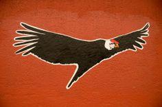 condor tattoo - santiago street art