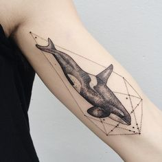 Orca whale on inner bicep with prismatic power geometry. Its a swimmer! Thanks Andrew!