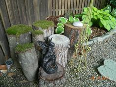 My mossy , shady stump garden. See more on my Mossy Stump Garden video on My Screendoorgirl 3 Videos Board.