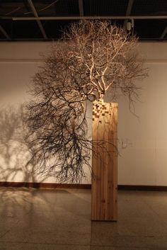 方生方死 Art Decor, Decoration, Zen Garden Design, Bonsai Art, Ad Art, Arte Floral, Art For Art Sake, Light Art, Installation Art