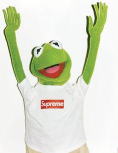 29eabb1c21bd Kermit+Arms.jpg 500×649 pixels Jim Henson