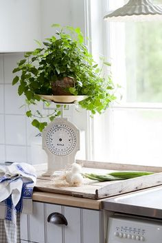 28 best salter scales images salter scales england uk hanging scale rh pinterest com
