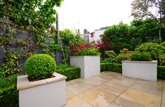 The rear garden of a family home in North London where the client's wish was for a low-maintenance and interesting space to connect the interior of their refurbished home with the outside. Outdoor Ideas, Outdoor Decor, North London, Connect, The Outsiders, Home And Family, Landscapes, Sidewalk, Gardens