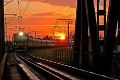 Trains, Landscape, Ideas, Scenery, Thoughts, Corner Landscaping, Train