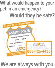 Free Pet Safety Pack from ASPCA