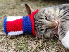 Uncle Sams Kitty Top Hat - Cats and Small Dogs. $18.00, via Etsy. july 4th independence day cat hat cat costume pet costume pet hat dog hat