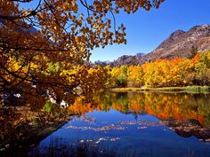 High resolution nature desktop wallpaper of Eastern Sierra In Autumn, California (ID: Nature Desktop Wallpaper, Hd Wallpaper, Wallpapers, Remote Viewing, Lombok, Places To See, Cool Photos, Beautiful Places, Scenery
