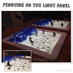 Penguins on the light panel