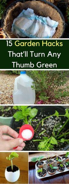15 Garden Hacks That'll Turn Any Thumb Green