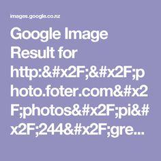 Google Image Result for http://photo.foter.com/photos/pi/244/green-velvet-chair.jpg