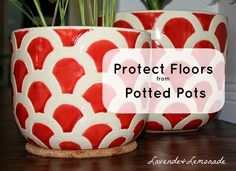 Use cork pads to protect floors from potted plants!    LavendeLemonade Potted Plants, Indoor Plants, Homemade Crafts, Plant Decor, Home Hacks, Diy Craft Projects, House Plants, Decorating Tips, Gardening Tips