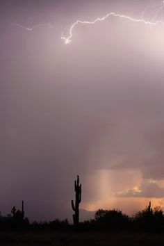 Phoenix, Arizona - LOVED the lightning storms there.