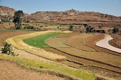 Antsirabe area, Central Madagascar