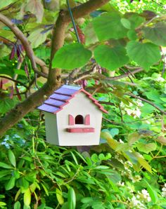 Birdhouse in Redbud Tree Penmoken Park Lexington KY5 by Patsysjoy, $12.00