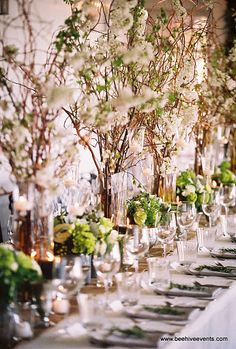 Beehive Events  Sophisicated, excellent for secret garden, midsummer nights dream or similar