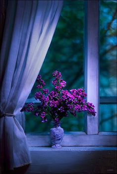 Window and curtains are a lovely shade of blue lavender with violet lilac flowers in a blue vase on the window sill.