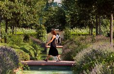ADMIRE THE PROMENADE PLANTÉE  Top 20 Free Things to Do in Paris