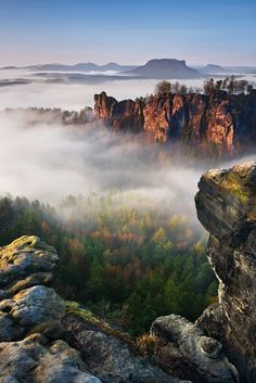 Foggy morning Bastei