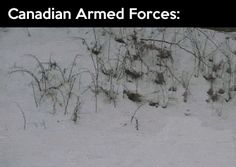 funny-gif-Canada-different-armed-forces