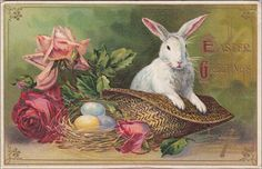 https://www.etsy.com/listing/181107231/easter-greetings-precious-white-bunny?utm_source=Pinterest