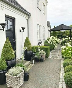 Exterior color scheme white black gray Exterior color scheme white black gray The post Exterior color scheme white black gray appeared first on Vorgarten ideen. Exterior Color Schemes, Grey Exterior, Exterior Design, Garden Cottage, Garden Pots, Garden Ideas, Front Yard Landscaping, Hydrangea Landscaping, White Gardens