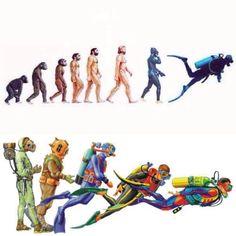 Evolution of Diving.