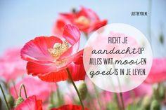 Richt je aandacht op alles wat mooi en goed is in je leven.