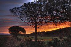 Die Serengeti der Toskana: Parco Naturale della Maremma | Maremma Geheimtipp