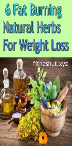 6 Fat Burning Natural Herbs For Weight Loss