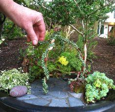 Cute archway for fairy garden!