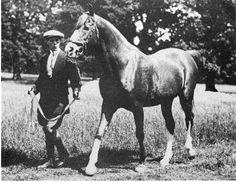 Rijm, 1901