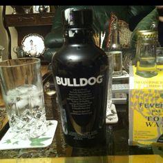 Que bien sienta un gin tonic de vez en cuando