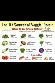 Sources of protein