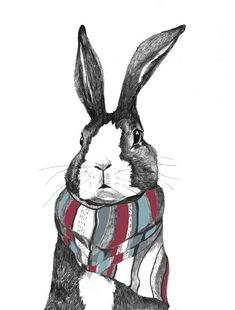 Rabbit Art - Rabbits Love Scarves    This bunny rabbit loves scarves - especially the new scarf he got for his birthday!  He does look very